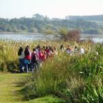 Observando aos alumnos desde o posto de observación de aves.