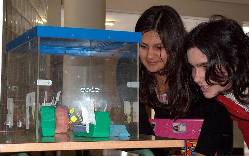 """""""A célula e os seus orgánulos"""": exposición realizada polo alumnado de 1º de ESO"""