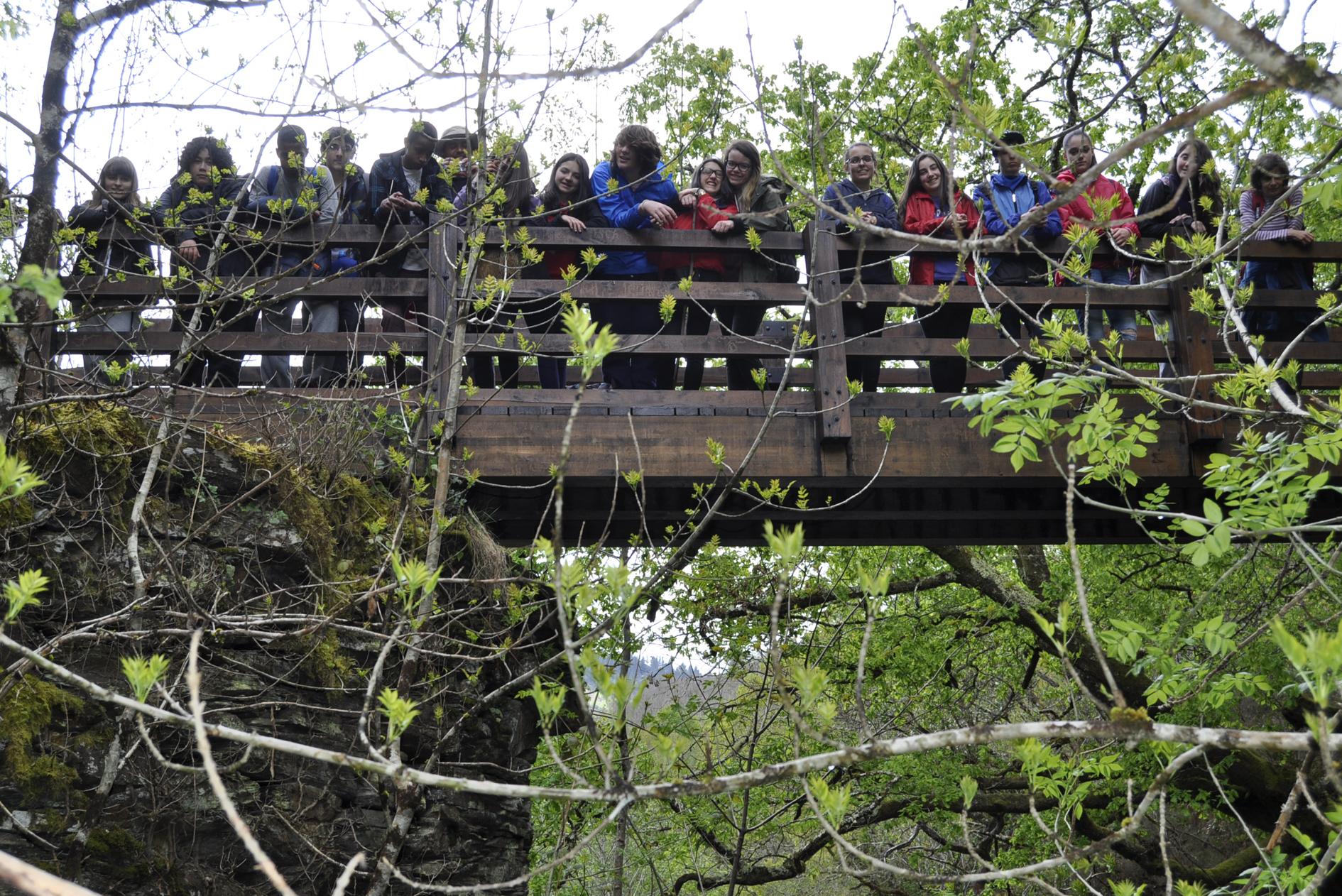 Ponte da Rastradeira